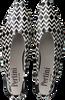Zwarte PERTINI Pumps 15839  - small