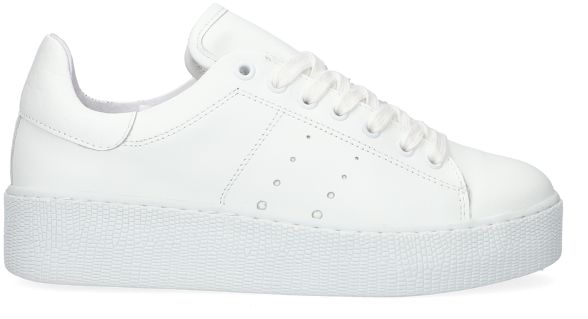 Witte TANGO Lage sneakers CHANTAL 12-A  - larger