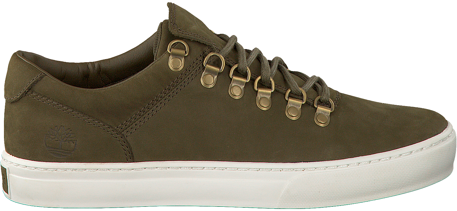Timberland Aventure 2.0 Cupsole Alpin Hommes D'olive Oxford qSGG5