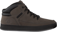Grijze TIMBERLAND Sneakers DAVIS SQUARE HIKER  - medium