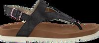 Zwarte MARUTI Sandalen BEAR  - medium