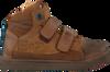 Cognac BRAQEEZ Sneakers 417531  - small