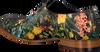 Zwarte MASCOLORI Nette schoenen BIRDS IN PARADISE - small