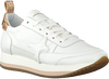 AMA BRAND DELUXE LAGE SNEAKER 845 - small