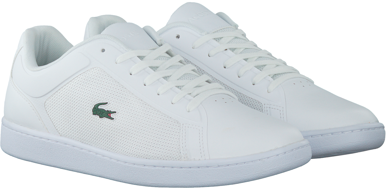 Chaussures Lacoste Blanc En 47 Hommes rKucdC2