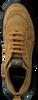 Cognac COPENHAGEN FOOTWEAR Sneakers CPH40  - small