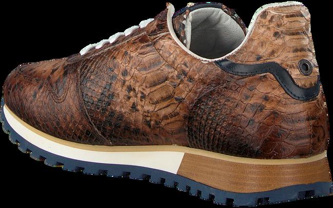 Cognac GIORGIO Sneakers HE09514  - large