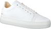 Witte NUBIKK Sneakers JAGGER JOE  - small