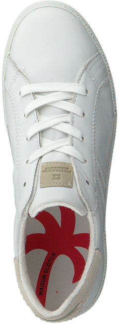 Witte SCOTCH & SODA Sneakers LAURITE  - large