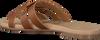 Cognac OMODA Slippers 179854  - small