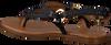 Zwarte NOTRE-V Sandalen 443011  - small