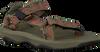 Grijze TEVA Sandalen HURRICANE XLT 2 C/T/Y - small