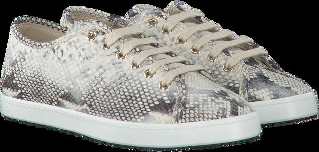 Multi STOKTON Sneakers 60-D-SS  - large