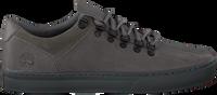 Grijze TIMBERLAND Sneakers ADV 2.0 CUPSOLE ALPINE OX  - medium