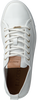 witte BLACKSTONE Veterschoenen PL97  - small