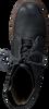 YELLOW CAB VETERBOOTS UTAH 4 - small