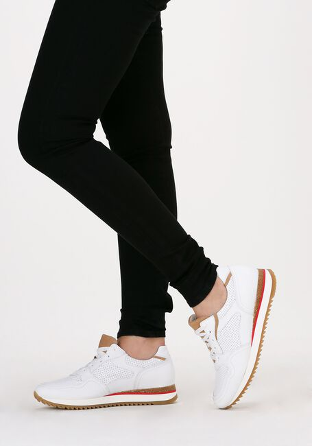 Witte GABOR Lage sneakers 036.1  - large