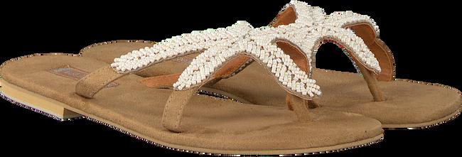 Beige HOT LAVA Slippers STARFISH - large