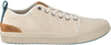 Beige TOMS Sneakers TRVL LITE LOW MEN  - small