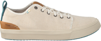 Beige TOMS Sneakers TRVL LITE LOW MEN  - medium