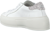 Witte P448 Lage sneakers LOUISE  - small