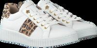 Witte BULLBOXER Lage sneakers AIB006ESL  - medium