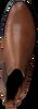 Cognac NOTRE-V Chelsea boots 46503FY  - small