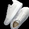Witte GOOSECRAFT Lage sneakers JULIAN CUPSOLE  - small