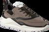 Grijze BARRACUDA Sneakers BU3242  - small