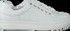 Witte ROBERTO D'ANGELO Sneakers VANATU  - small