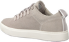 Grijze TIMBERLAND Lage sneakers AMHERST FLEXI KNIT ALPINE OX  - small