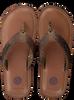 Bruine SCOTCH & SODA Slippers CADELLI  - small