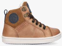 Cognac TON & TON Hoge sneaker ARVID  - medium