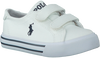 POLO RALPH LAUREN SNEAKERS SLATER - small