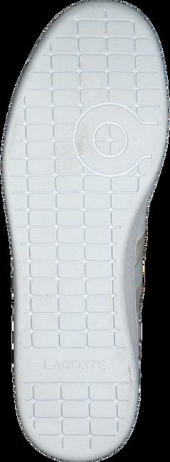 Witte LACOSTE Sneakers CARNEBY EVO  - large