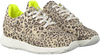 Beige PINOCCHIO Lage sneakers P1253  - small