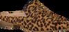 Bruine MARUTI Loafers BELIZ - small