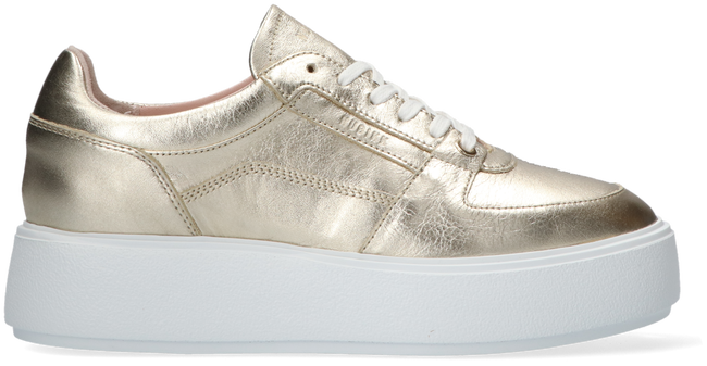 Gouden NUBIKK Lage sneakers ELISE BLOOM  - large
