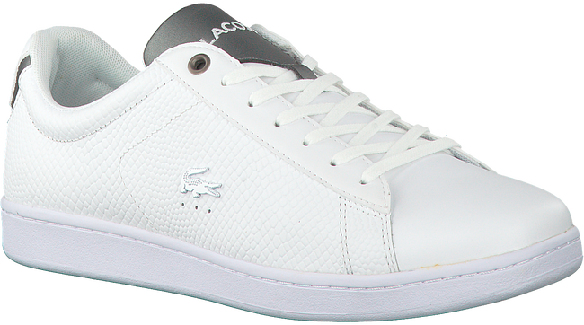 LACOSTE LAGE SNEAKER CARNABY EVO HEREN - large