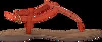 Oranje LAZAMANI Sandalen 75.618  - medium