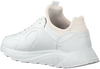 Witte EKN FOOTWEAR Lage sneakers LARCH DAMES  - small