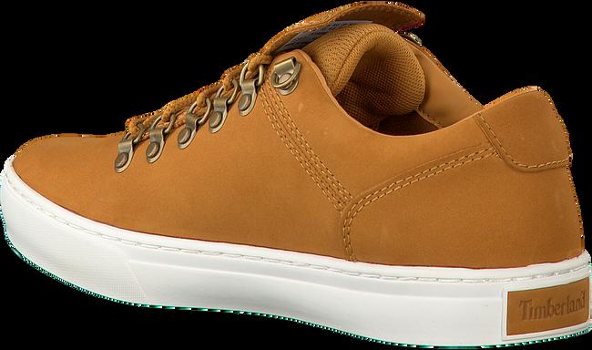 Camel TIMBERLAND Sneakers ADVENTURE 2.0 CUPSOLE ALPINE - large