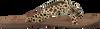 Beige LAZAMANI Slippers 75.283  - small