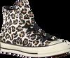 Taupe CONVERSE Sneakers CHUCK 70 HI DRIFTWOOD MULTI/LI  - small