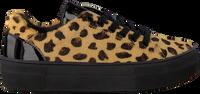 Beige BRAQEEZ Sneakers DEMI DREAM  - medium