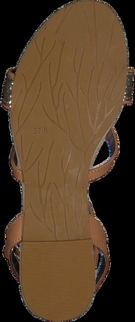 cognac MALUO Sandalen 5095  - large