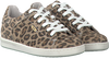 Beige VINGINO Sneakers TORNEO  - small