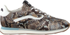 Blauwe FLORIS VAN BOMMEL Lage sneakers 85279 - small