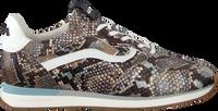 Blauwe FLORIS VAN BOMMEL Lage sneakers 85279 - medium