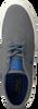Grijze POLO RALPH LAUREN Sneakers FAXON LOW-NE  - small